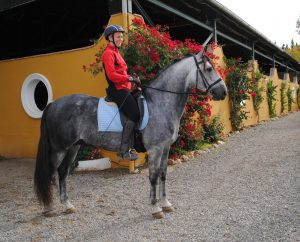 Riding lesson dressage Spain P.R.E.
