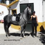 Ridning in Spain, dressage lesson, Fuengirola, Marbella