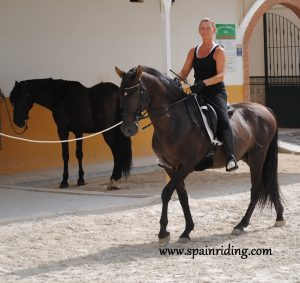 Private riding classes Dressage, Marbella, Spain